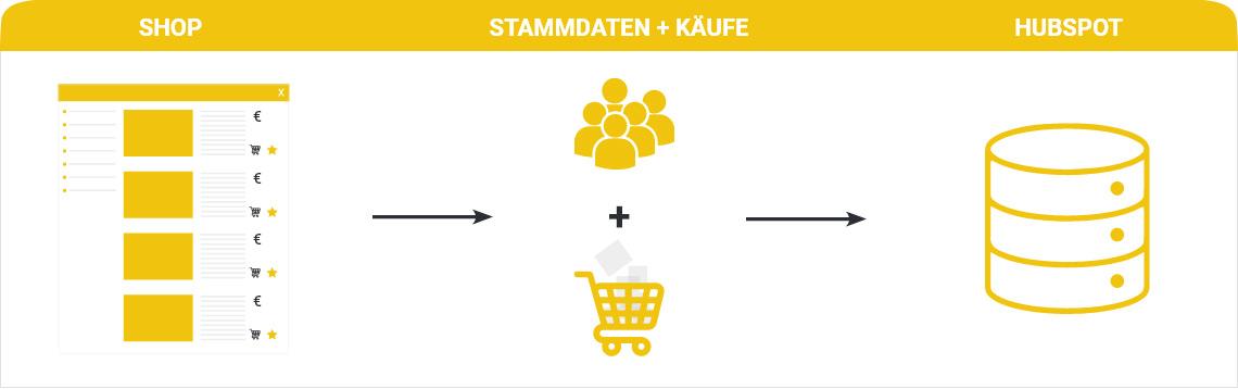 Grafik Shop, Stammdaten, HubSpot
